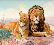 Lion and Lioness, The Saturday Evening Post Cover