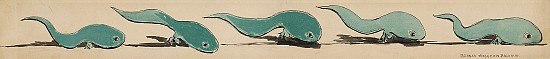 Water Babies Illustration- Tadpoles