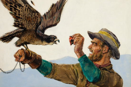 The Falconer, interior Argosy magazine story illustration